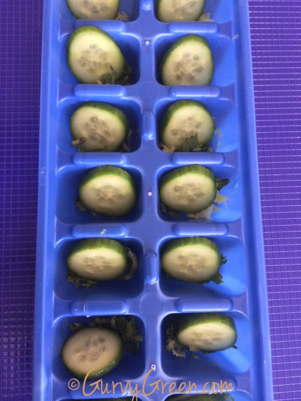 DIY your cucumber, mint, lemon ice cubes