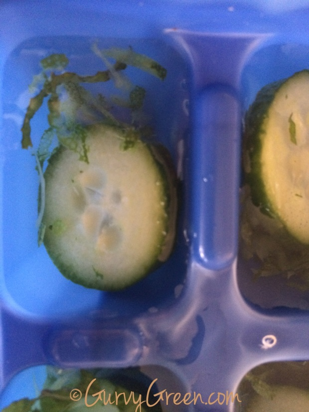 How to make a cucumber, mint, lemon zest infused ice cube